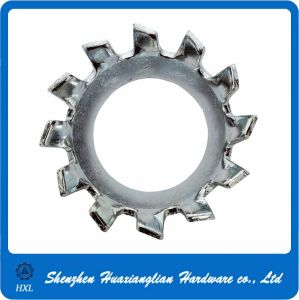 Stainless Steel Sawtooth Lock Washer pictures & photos