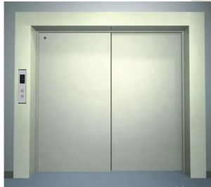 Germany Technology Goods Elevator / Freight Elevator Wgf20