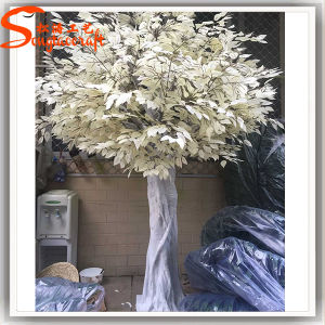 Outdoor Decoration White Artificial Banyan Tree pictures & photos
