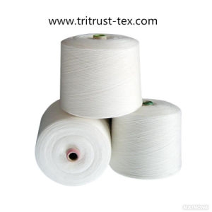 (2/20s) Polyester Yarn for Sewing pictures & photos