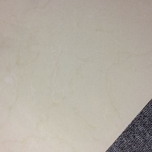 Top Sales 600X600mm Soluble Salt Wall and Floor Porcelain Tile pictures & photos