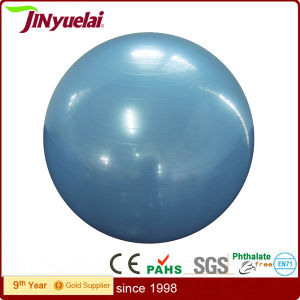 Standard Eco-Friendly PVC Gym Ball