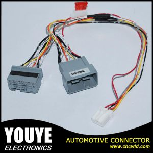 Wire Harness /Automotive Wire Harness/Cable Harness pictures & photos