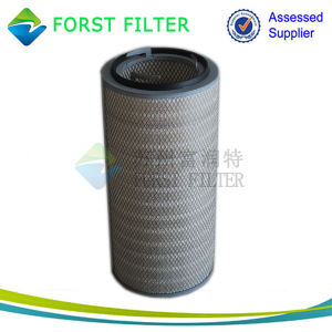 Forst Pleat Air Filter Cartridge pictures & photos