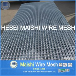 Manufacture Galvanized Square Hole /Stainless Steel Welded Wire Mesh pictures & photos