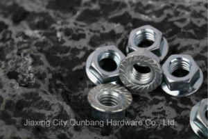 Hex Flange Nuts and Large Hex Flange Nuts (Cl. 6/8 DIN6923) pictures & photos