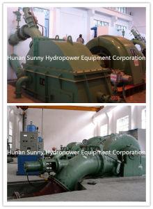 Double Jet Hydro (Water) Pelton Turbine Generator 350~7450kw / Hydropower pictures & photos