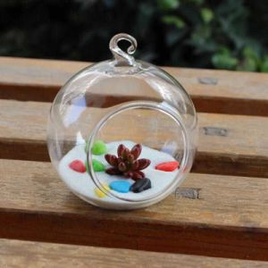 Glassware Apple Crafts pictures & photos