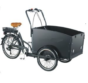 Electric Pedal Tricycle for Cargo pictures & photos