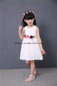 High Quality Sleeveless Embroidered Flower Girls Dress Children Wear pictures & photos