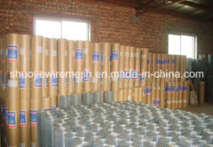 Factory Directly Sale Stainless Steel Welded Wire Mesh / PVC Coated Welded Wire Mesh Panel / Galvanized Welded Wire Mesh pictures & photos
