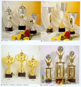 Sports Trophy pictures & photos