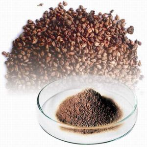 Grape Seed Extract pictures & photos