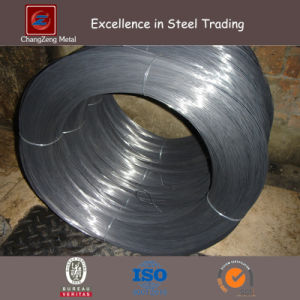 Carbon Spring Steel Wire (CZ-W59) pictures & photos