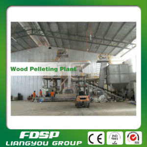 Hot Sale 5tph Wood Chips Pellet Line with 5PCS Pellet Mill pictures & photos