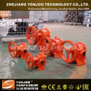 Gc Iron Casting Gear Pump for Oil Transfer Application pictures & photos