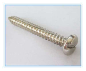 DIN 7971 Stainless Steel Slotted Pan Head Self Tapping Screw pictures & photos