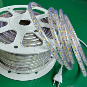 5050 60LEDs 220V/240V LED Strip/Flexible Strip LED pictures & photos