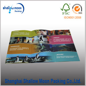 Customized Eco-Friendly Paper Printing Service (QYCI15154) pictures & photos