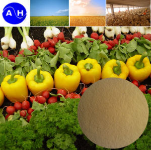 Vegetable Based Amino Acid Chelate Boron Fertilizer pictures & photos
