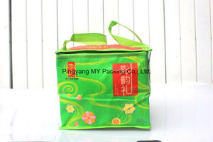 Excellent Quality Promotional Zipper Cooler Bag pictures & photos