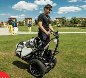 Golf Electric Chariot Scooter pictures & photos