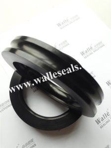 James Walker Fs Casing Tubing Seal for Oil and Gas pictures & photos