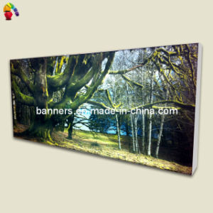 Advertising Big Tension Fabric Poster Frame pictures & photos