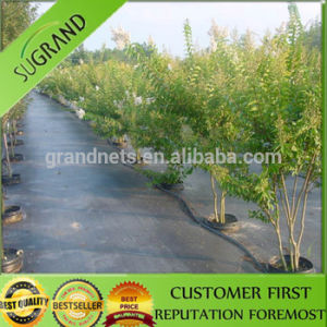 100GSM and 90GSM Black with Green Line Ground Cover pictures & photos