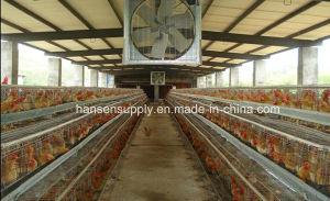 1060mm Industrial Drop Hammer Exhaust Fan pictures & photos