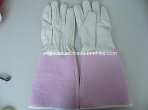 White Glove-Pink Glove-Safety Glove-Garden Glove pictures & photos