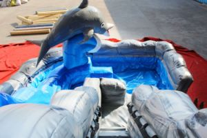 Dolphin Inflatable Water Slide Chsl567 pictures & photos