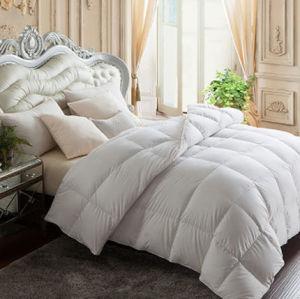 Down Alternative Duvet Comforter (DPFB8032) pictures & photos