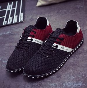 Casual Mesh Shoes Flat Leisure Footwear for Men Shoe (AKCS15) pictures & photos