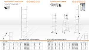 Single Straight Ladder and Extension Ladder pictures & photos