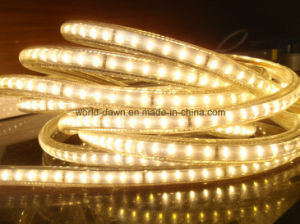 SMD3014 High Lumen LED Rope Light LED Strip pictures & photos