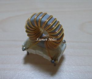 Toroidal Inductor Power Choke Coil Filter T16mm