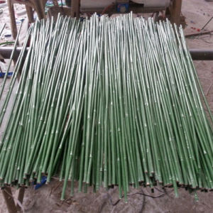 Color Bamboo Sticks with High Quality pictures & photos