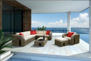 PE Rattan & Aluminum Furniture, Outdoor Rattan Sofa (S0056) pictures & photos
