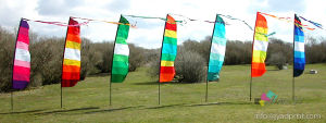 Complete for Sale Home Decoration Flying Pole Garden Flag pictures & photos
