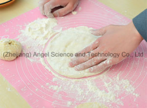 Kitchen Silicone Tableware Mat Silicone Baking Mat Sm06 pictures & photos