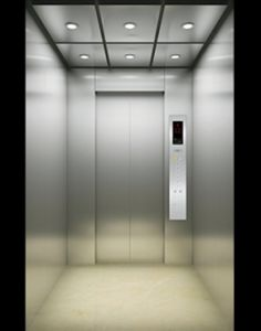 Machine Roomless Passenger Elevator with CE