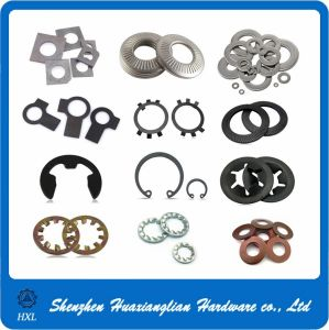 Supply Different Types Flat Spring Lock Metal Washer pictures & photos