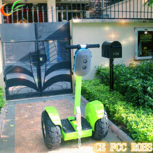 Best 2 Seater Electric Golf Cart for Sale with CE Certificate pictures & photos