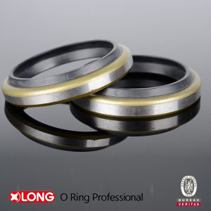 Dust Proof Oil Seals in Hydraulic pictures & photos