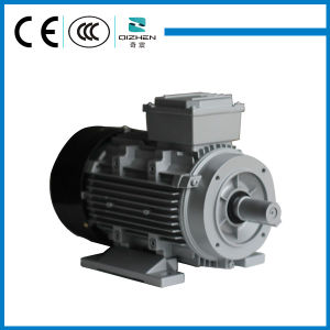 MS Series Aluminium Body Three Phase Motor pictures & photos