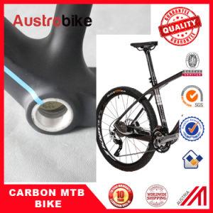 "Mountain Bike Carbon Frame 26"" 20"" pictures & photos"