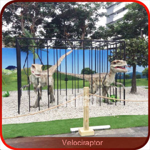 Dinosaur in Cage Fun City Velociraptor Dinosaur for Sale pictures & photos