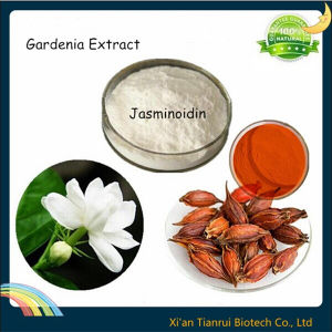 100% Natural Gardenia Extract Jasminoidin pictures & photos