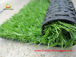 Synthetic Field Grass for Home Without Heavy Metals pictures & photos